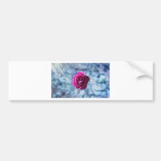 Autocollant De Voiture Noël a glacé le rose de rose