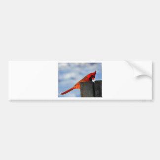 Autocollant De Voiture Oiseau de rouge de Noël