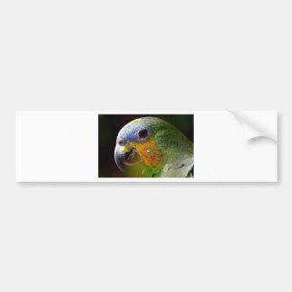 Autocollant De Voiture Oiseau exotique de vert d'oiseau d'animaux