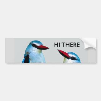 Autocollant De Voiture Oiseaux Afrique du Sud de martin-pêcheur