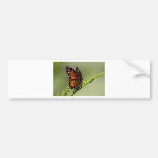 Autocollant De Voiture Papillon de monarque magnifique sur l'arrière -