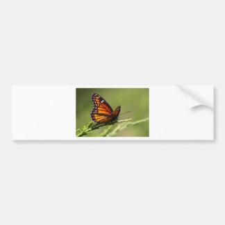 Autocollant De Voiture Papillon de monarque sur le genévrier