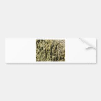Autocollant De Voiture Pierre patinée avec l'arrière - plan de lichen et