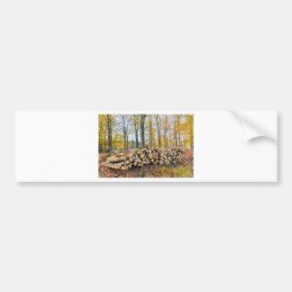 Autocollant De Voiture Pile des troncs d'arbre dans la chute forest.JPG