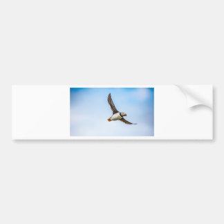 Autocollant De Voiture Plume de mouche de faune de vol de mer d'oiseau de