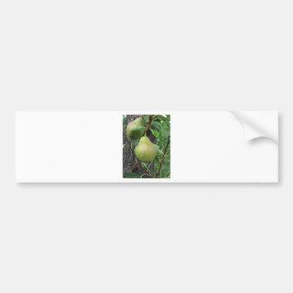 Autocollant De Voiture Poires vertes accrochant sur un poirier croissant