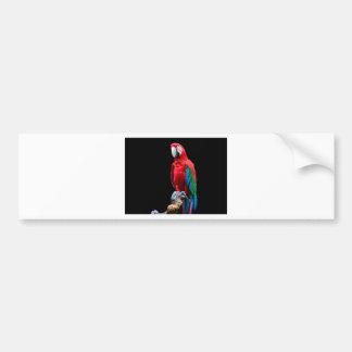 Autocollant De Voiture Portrait de perroquet