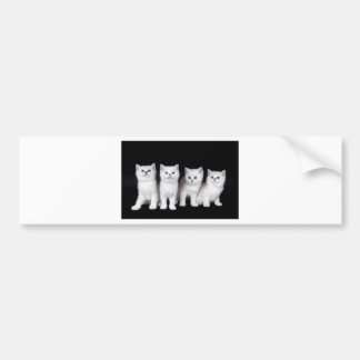 Autocollant De Voiture Rangée de quatre chatons blancs sur background.JPG