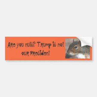 Autocollant De Voiture Squirrelly sont vous Nuts ! L'atout n'est pas