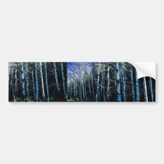 Autocollant De Voiture Trembles et pins en automne