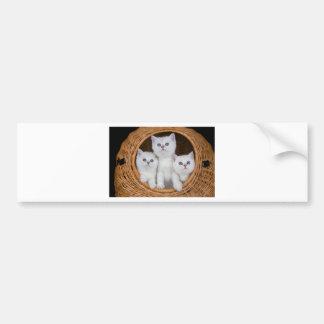 Autocollant De Voiture Trois chatons blancs en roseau basket.JPG