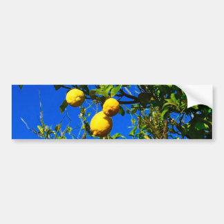 Autocollant De Voiture Trois citrons siciliens