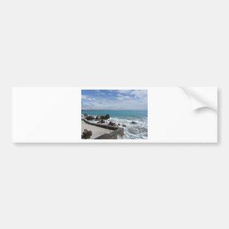 Autocollant De Voiture Vue panoramique de côte de Castiglioncello en