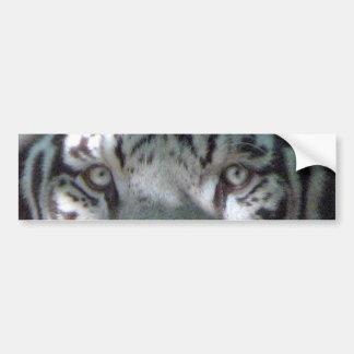 Autocollant De Voiture Yeux blancs de tigre