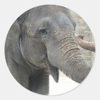 Autocollant d'éléphant de son de la trompette