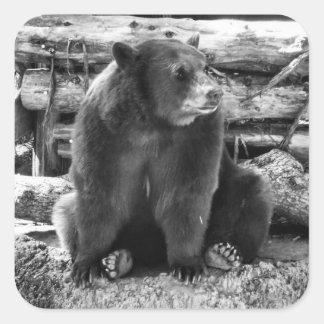 Autocollant d'ours