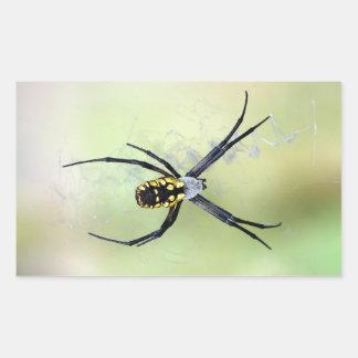 Autocollant noir et jaune d'araignée de jardin