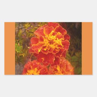 Autocollant orange de rosée de matin d'automne de