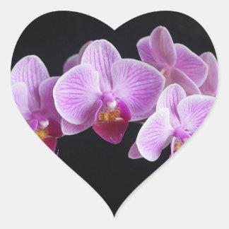 Autocollant orchidées