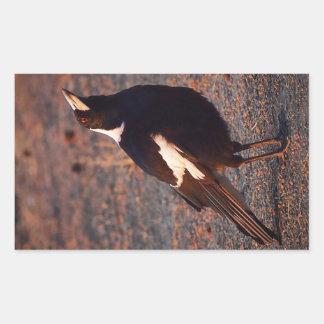 Autocollant rectangulaire de pie australienne