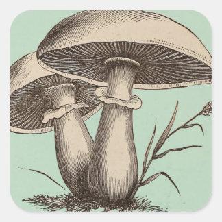 Autocollant vintage de champignon