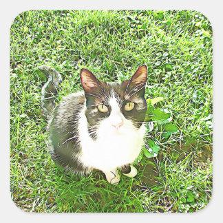 Autocollants Artsy noirs et blancs de chat