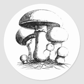 Autocollants de champignons de pré