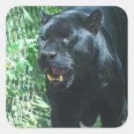 Autocollants de chat de panthère noire