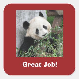 Autocollants de panda géant, professeur, le grand