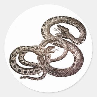 Autocollants de serpents