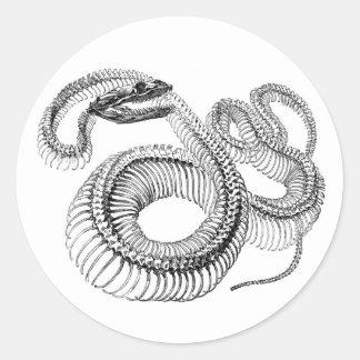 Autocollants de squelette de serpent