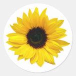 Autocollants jaunes de joint d'enveloppe de fleur