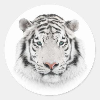 Autocollants ronds de tête blanche de tigre