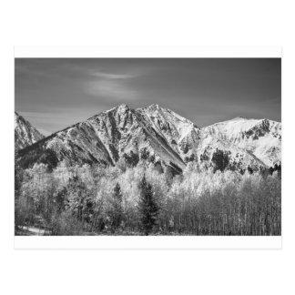 Automne de montagne rocheuse haut en noir et blanc cartes postales