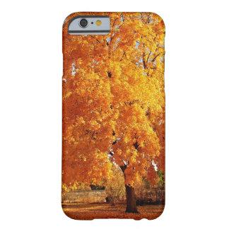 Automne de réalité d'arbre coque iPhone 6 barely there