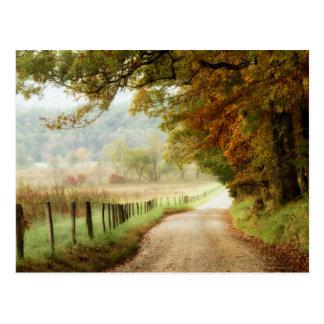 Automne sur une route de campagne carte postale