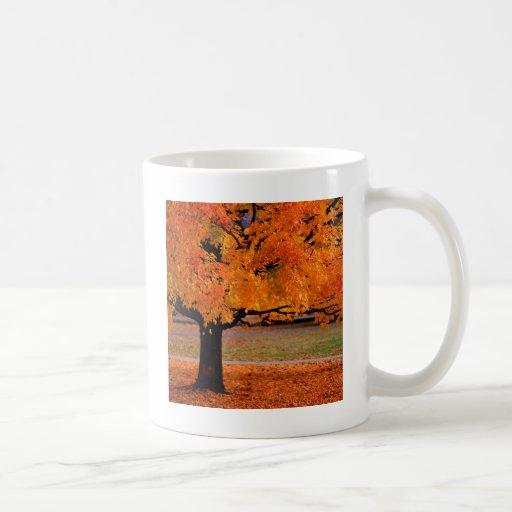 Automne une beauté tasse