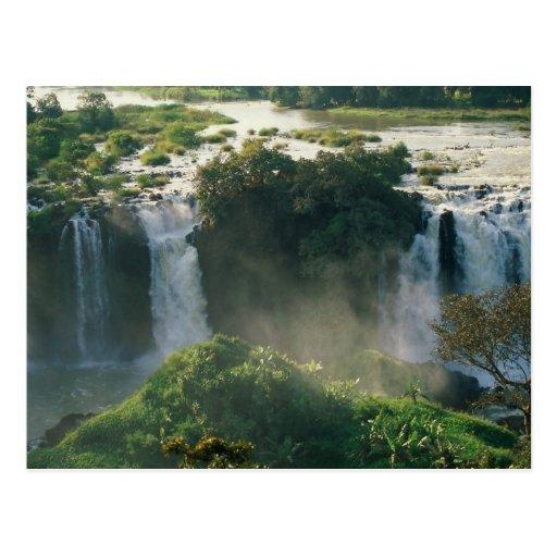 Automnes bleus du Nil, Ethiopie Cartes Postales