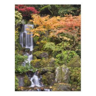 Automnes et couleurs merveilleux d'automne carte postale