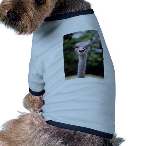 Autruche clignant de l'oeil - drôle manteaux pour chien