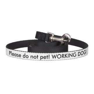 Avance de chien de service de vétéran des USA Laisse