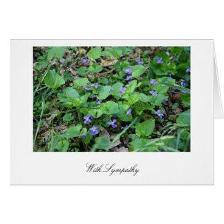 Avec la carte de violettes de sympathie