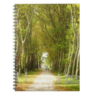 Avenue de carnet de photo d'arbres