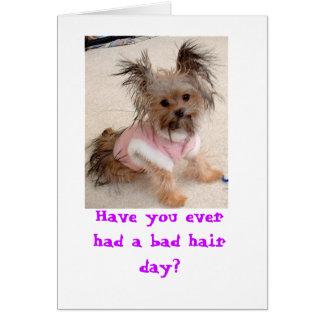 Avez-vous jamais eu un mauvais jour de cheveux ? cartes