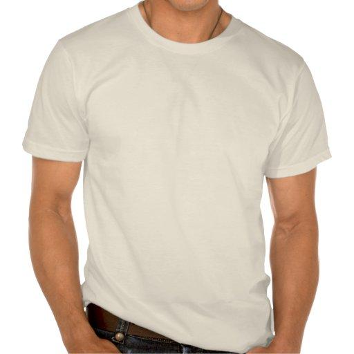 AVIATEUR au cours de la journée T-shirt
