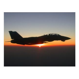 Avion de chasse de F 14 Tomcat Carte Postale