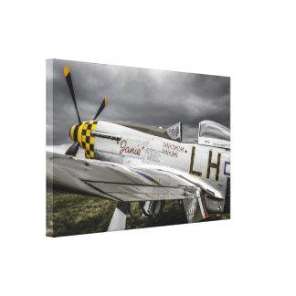 Avion de combat nord-américain du mustang P51 de 2 Toiles