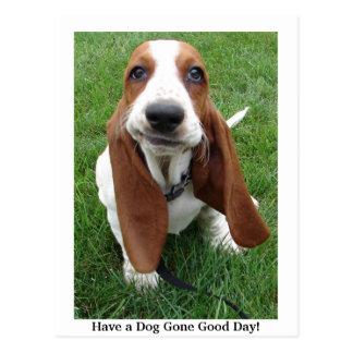 Ayez un beau jour allé par chien ! Carte postale