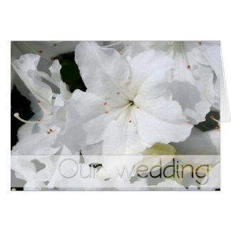 Azalée blanche - notre mariage carte de vœux