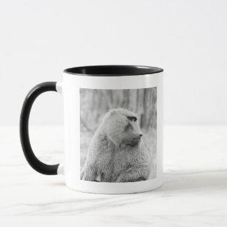 Babouin africain mug